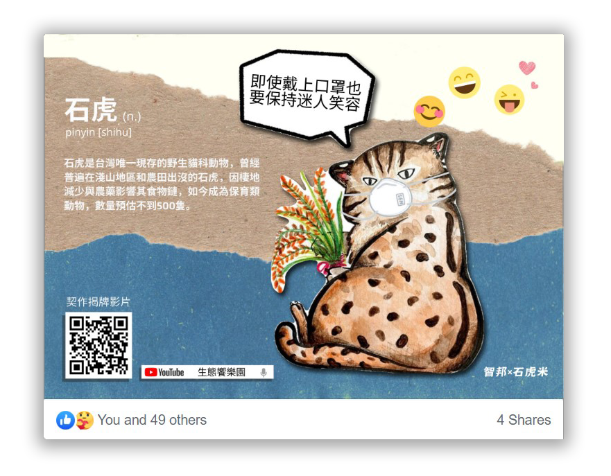Leopard-Cat-Rice-Art1